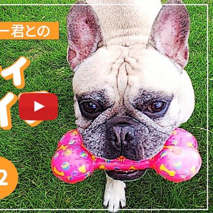 SAKURAのYoutubeチャンネル – #18 愛犬キンちゃんとパウダー君とのビューティペットライフ #2